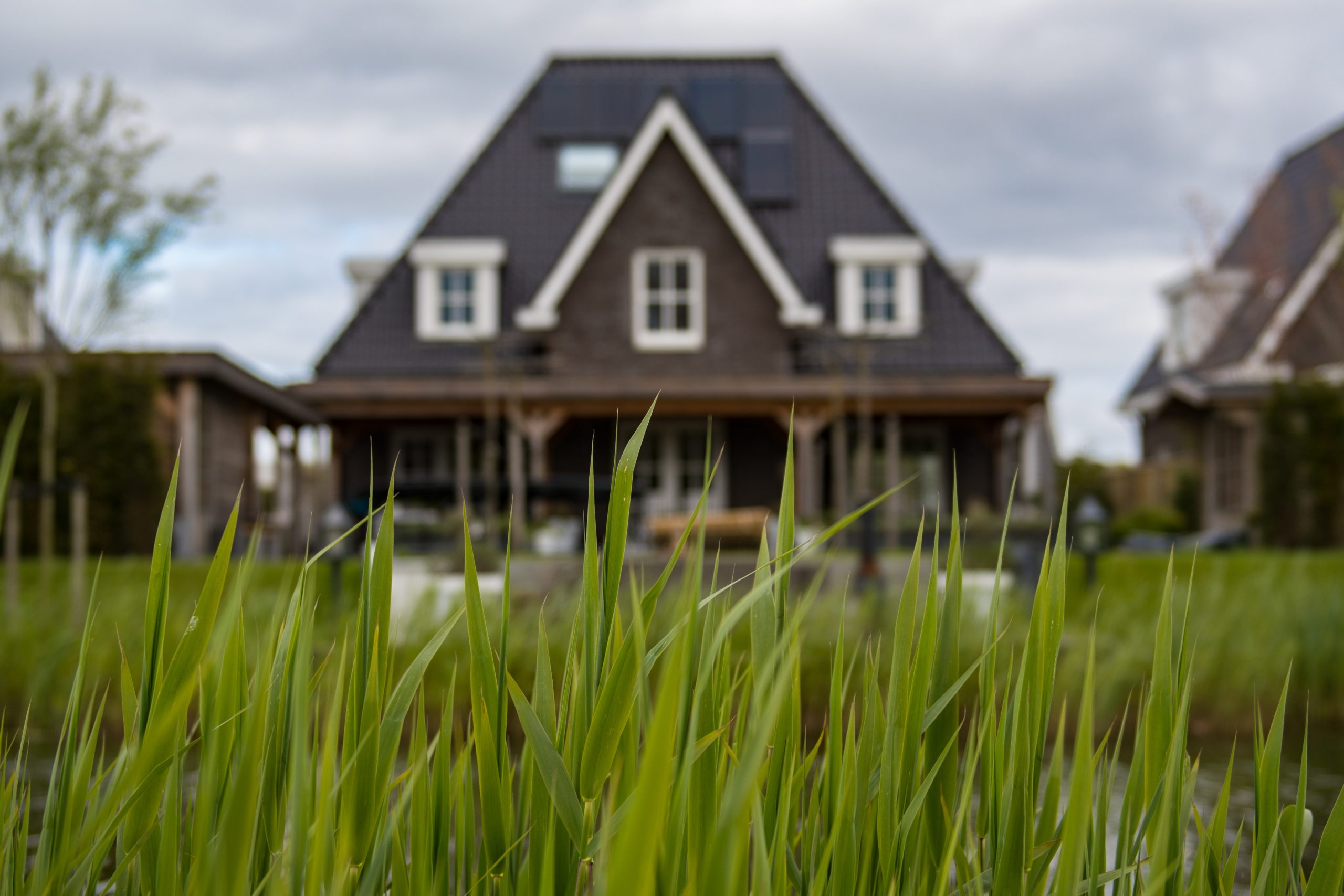 Know Your Foreclosure Options